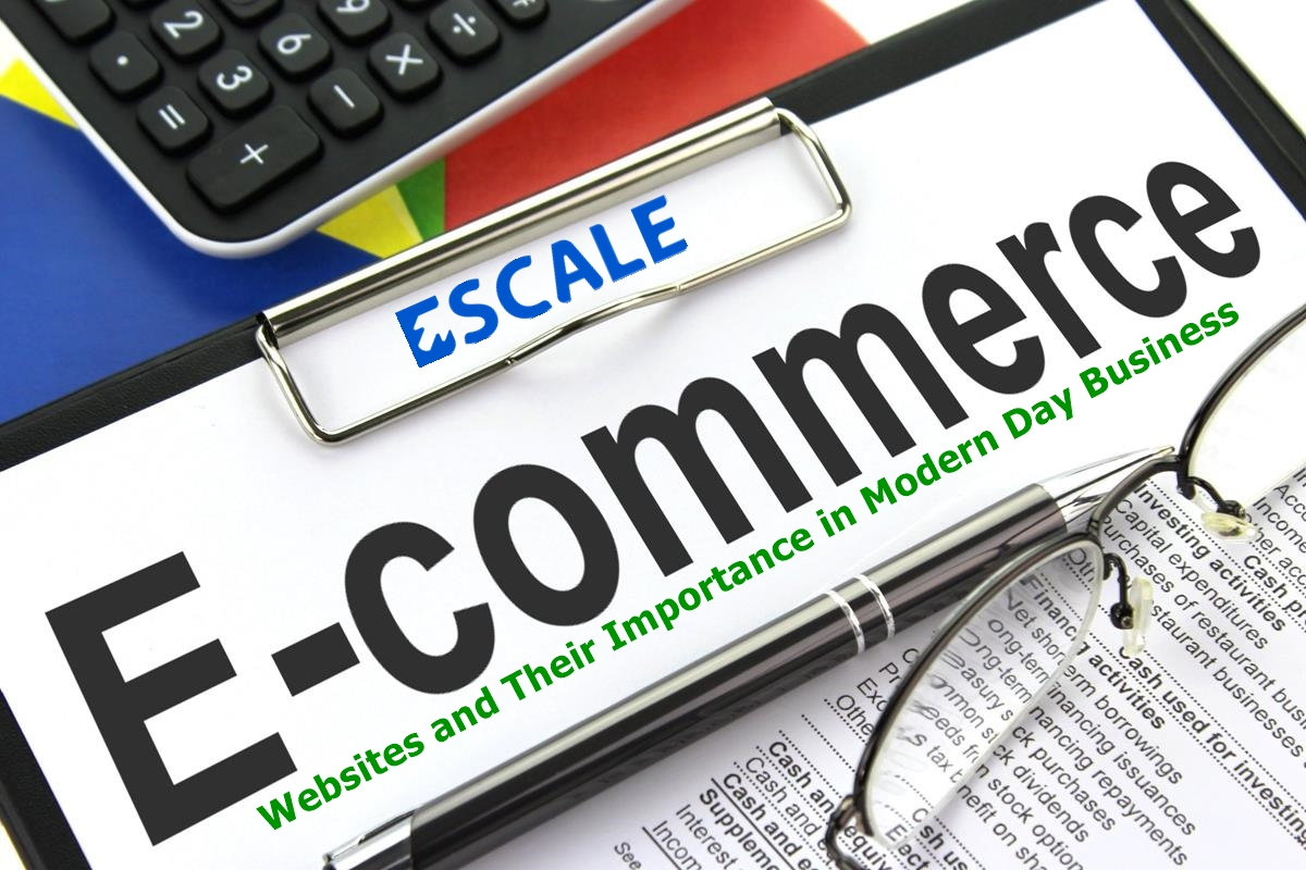 Ecommerce websites and their importance