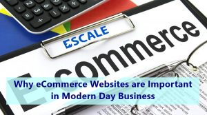 Featured image: Why eCommerce Websites are Important in Modern Day Business