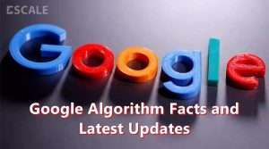 Google Algorithm Facts and Latest Updates That Every SEO Should Know