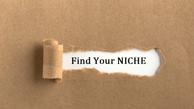 Launching an eCommerce Store: Find Your Niche image