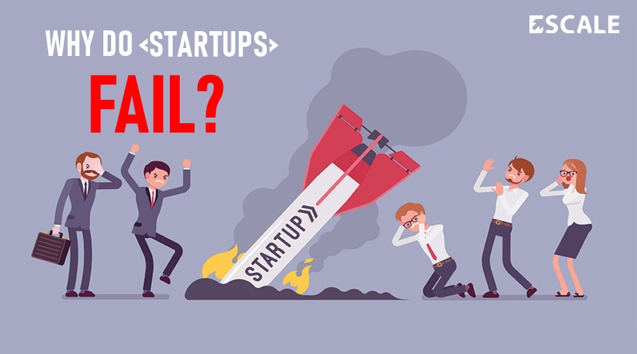 Why Do Startups Fail in a Very First Year